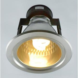 Светильник Arte DOWNLIGHTS A8044PL-1SI