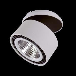 Светильники Lightstar FORTE INCA 213820