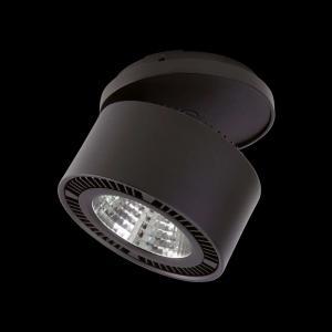 Светильники Lightstar FORTE INCA 213827