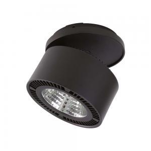 Светильники Lightstar FORTE INCA 214827