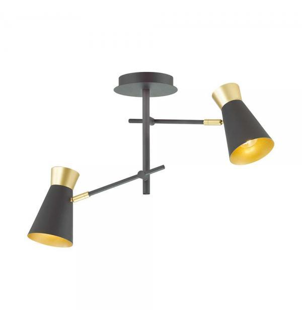 Светильник Lumion LIAM 3790/2C