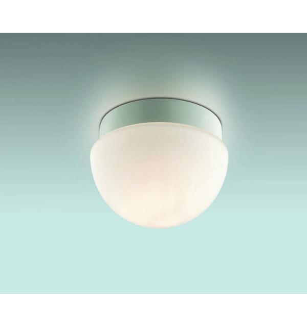 Светильник Odeon Light 2443/1B